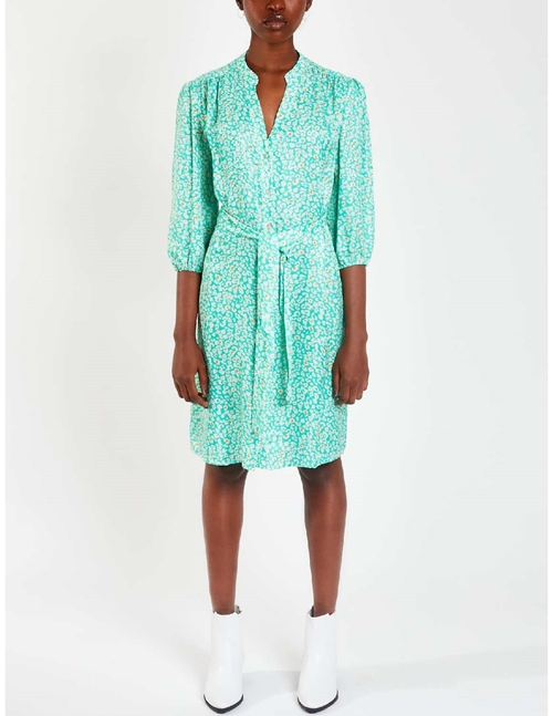 marina shirt dress - new animal spearmint